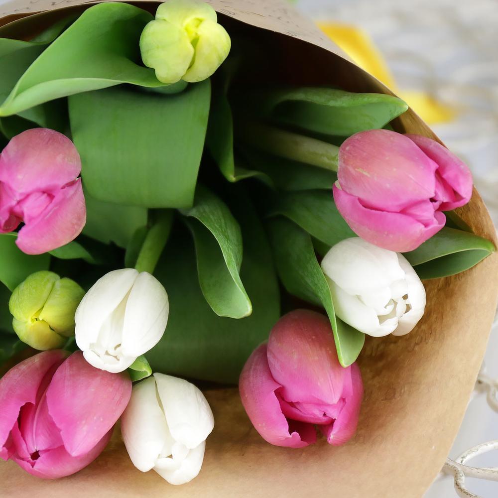 Букет из 11 разноцветных тюльпанов в крафте