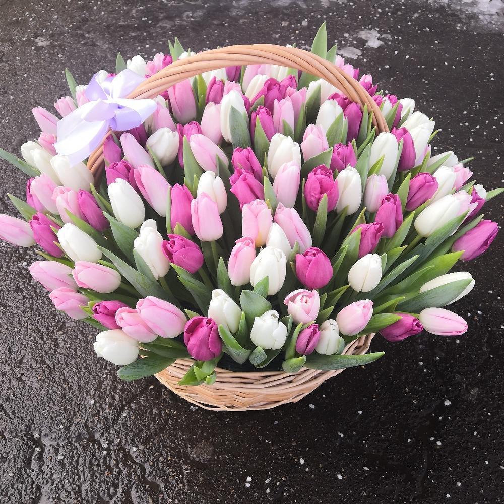 Корзина из нежных тюльпанов