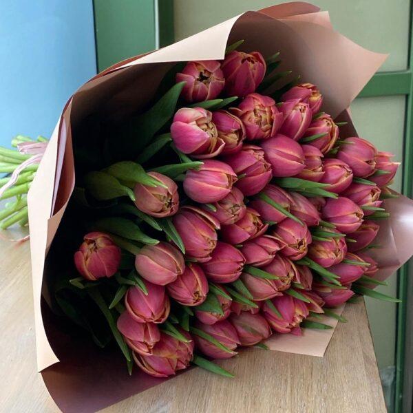 Тюльпан колумбус